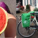 Alpenüberquerung mit dem Fahrrad – Alles was du wissen musst
